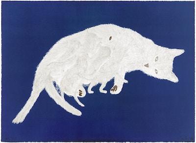 Kiki Smith, Litter, 1999